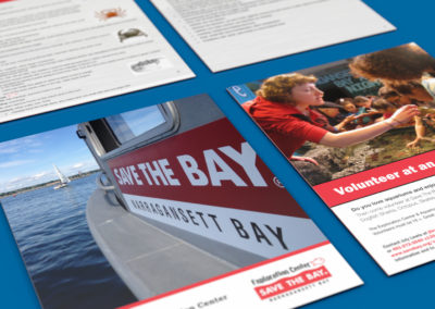 Graphic Design For Save The Bay